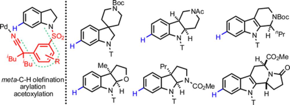 metalloenzymes for olefin metathesis